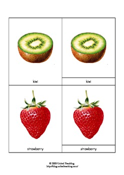 Montessori Three Part Cards of Fruits