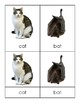 Montessori Three-Part Reading Cards: Animals (PHONETIC Words Only)