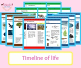 Montessori Timeline of Life