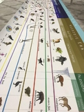 Montessori Timeline of Life for Second Great Lesson - The