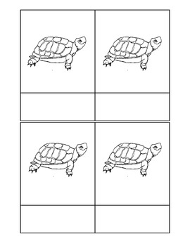 Montessori: Turtle Nomenclature