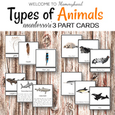 Montessori Types of Animals Cards