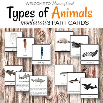 Montessori Types of Animals Cards