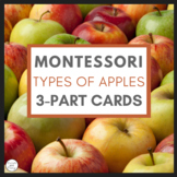 Montessori 3 Part Cards - Types of Apples