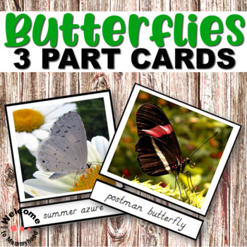 Montessori Types of Butterflies 3 part cards