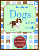 Montessori - Types of Dogs 3 - Part Cards