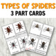 Montessori Types of Spiders 3 Part Cards