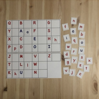 Montessori Alphabet Upper and Lower case letter match up