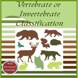 Montessori Vertebrate Or Invertebrate Classification Cards