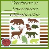 Montessori Vertebrate Or Invertebrate Classification Cards