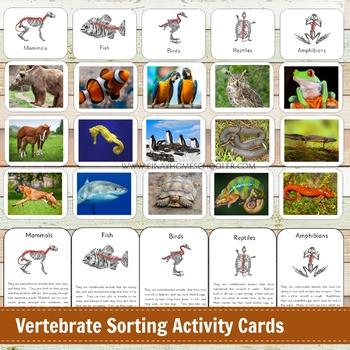 Montessori Vertebrate Sorting Activity Cards