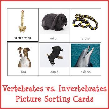 Montessori Vertebrates vs. Invertebrates Picture Sorting Cards