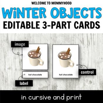 Montessori Winter 3 Part Cards