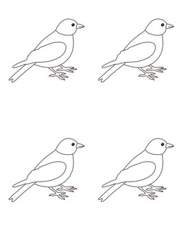 Montessori Zoology Illustrations and Outlines