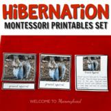 Montessori Hibernation Printables