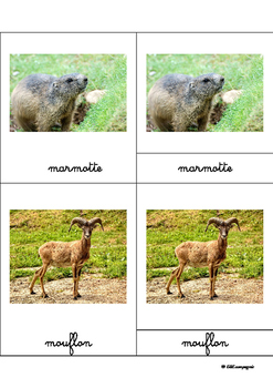 Montessori cards: mountain animals