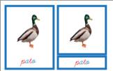 Montessori inspired Blue cards in SPANISH