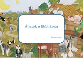 Montessori inspired animals in Bible cards