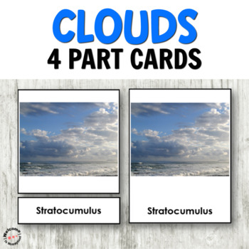 picture relating to Types of Clouds Worksheet Printable known as 4 Versions Of Clouds Worksheets Schooling Supplies TpT