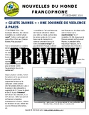 Monthly news summaries for French students: December 1st, 2018