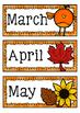Months of the Year: Australian Seasons
