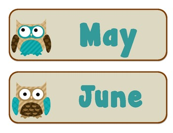 Months of the Year - Owls