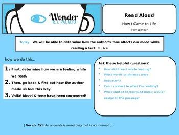Mood & Tone using word choice in Wonder by R.J. Palacio