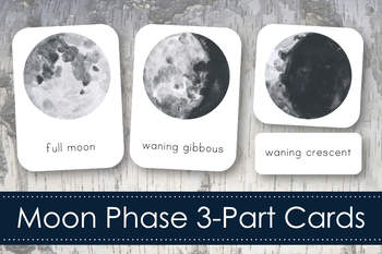 photo regarding Printable Moon Phases named Moon Stages Montessori Printable Worksheets Instructors Shell out