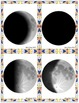 Moon Phase Playing/Study Cards