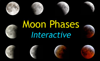 Moon Phases Interactive