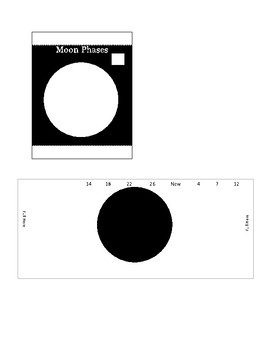 Moon Phases Organizer