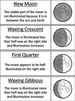 Moon Phases Word Wall Cards (Space Science/ Astronomy Unit - Lunar Cycle)