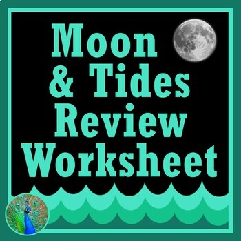 Moon Phases + Tides Review Activity Middle School NGSS MS-ESS1-1 MS-ESS1-2