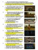 Moonrise Kingdom Film (2012) 15-Question Multiple Choice Quiz