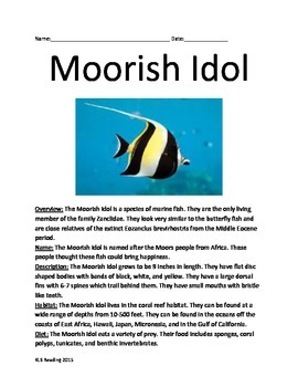 Moorish Idol - Fish - Informational Article Lesson questions  Gill Finding Nemo