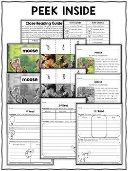 Moose Close Reading Passage Activities