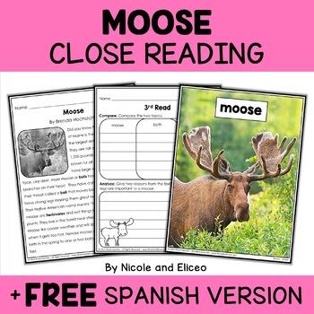 Moose Close Reading Passage Activities
