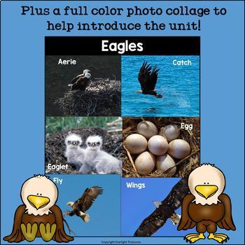 Eagles Mini Book for Early Readers: Bald Eagles