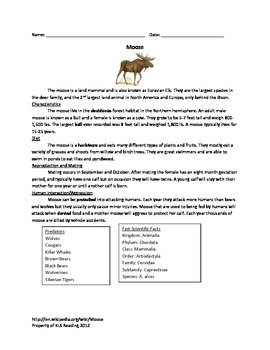 Moose - Review Article - Questions Vocabulary True/False Word Search