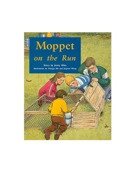Moppet on the Run, comprehension questions and answers