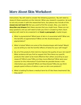 More About Skin Worksheet