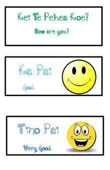 Māori Feelings Display