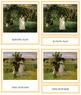 Morisot (Berthe) 3-Part Art Cards - Color Borders