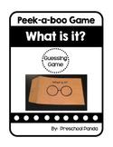 What is it?  Hide and Seek Photo Game Preschool PreK Kinder