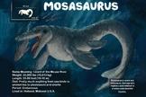 Mosasaurus - Dinosaur Poster & Handout