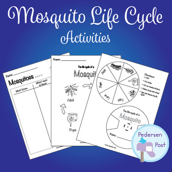 Mosquito Life Cycle Activities