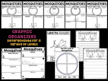 Mosquitoes : Graphic Organizers and Writing Craft Set : Insects and Bugs