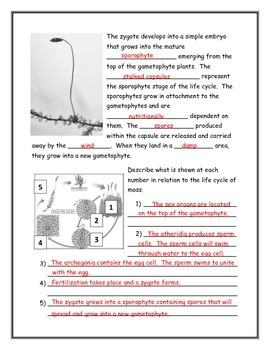 Moss Note Taking