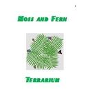 Moss and fern Terrarium
