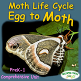 Moth Life Cycle - Egg to Moth